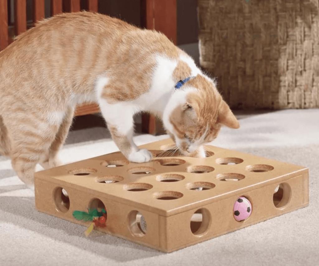 Развивающие игры для животных